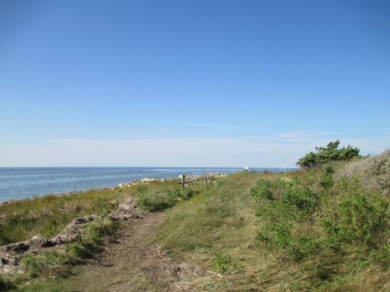 Springer's Point Preserve : View of sound at end of trail