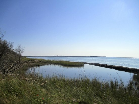 Springer's Point Preserve : View of the sound