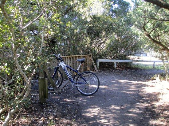 Springer's Point Preserve : Bike parking at trailhead