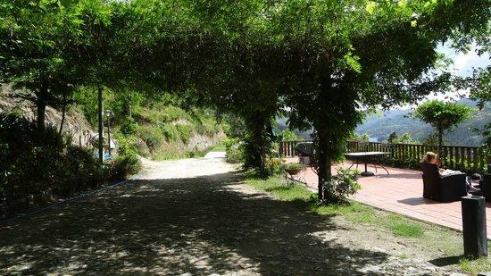 Quinta de Gestacos: Vista da Quinta