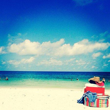 South Marco Beach: Gorgeous beach :)
