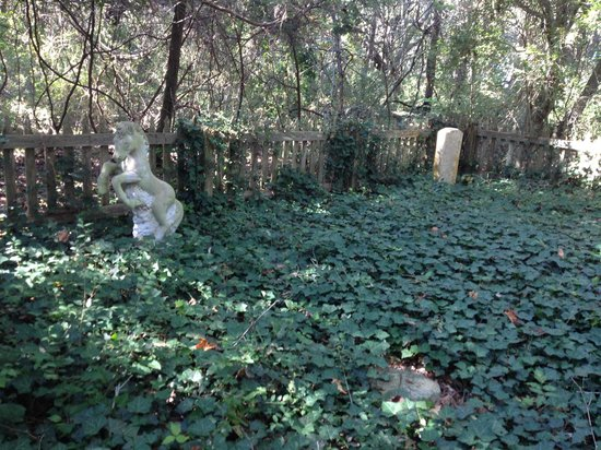 Springer's Point Preserve : Grave site of Sam Jones and his horse