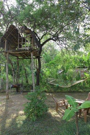 Samanala Guest House : The garden with the hammock