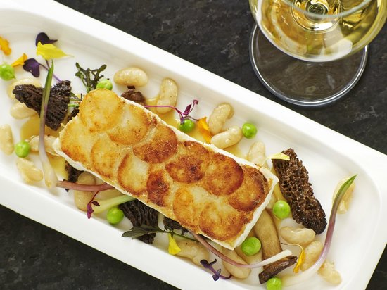 Potato Crusted Halibut - Foto di Aspen Meadows Resort, Aspen ...
