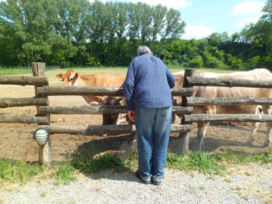 Agriturismo La Rondanina: With the animals