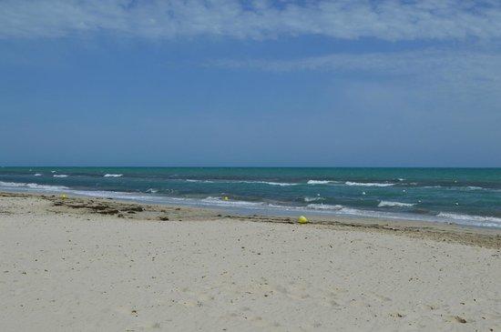 Djerba Holiday Beach: Beach