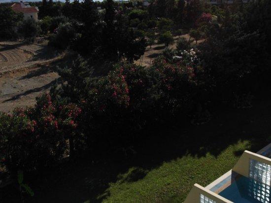 Atrium Palace Thalasso Spa Resort & Villas : view 2