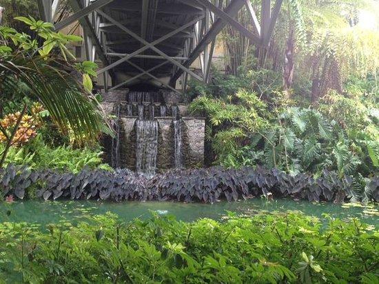 Loews Royal Pacific Resort at Universal Orlando: waterfalls