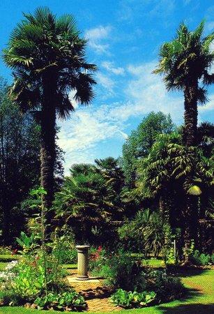 Wheelwrights Cottage: Abbotsbury Sub-Tropical Gardens - an easy walk away