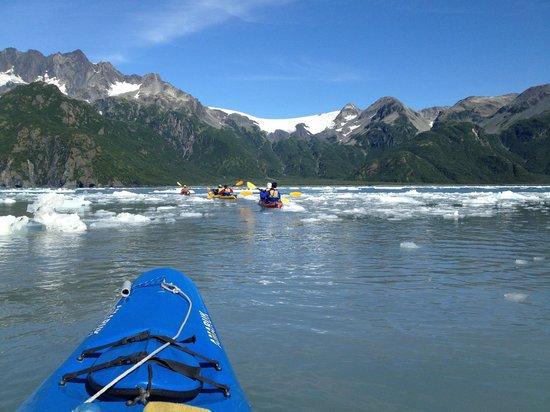 Kayak Adventures Worldwide: Debris field really fun