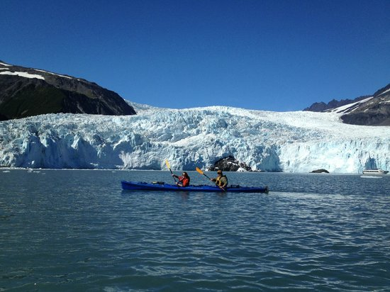 Kayak Adventures Worldwide : Crusing infront of Glacier