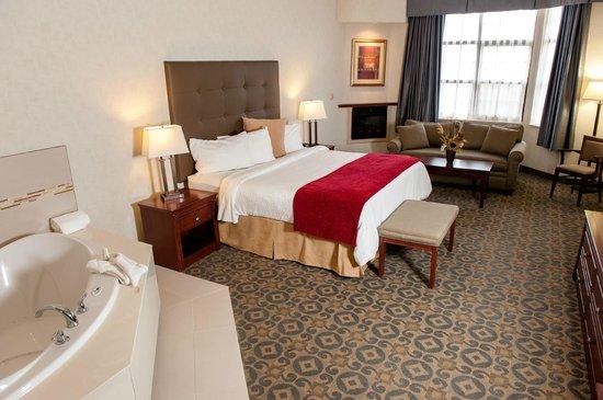 BEST WESTERN Brantford Hotel And Conference Centre照片