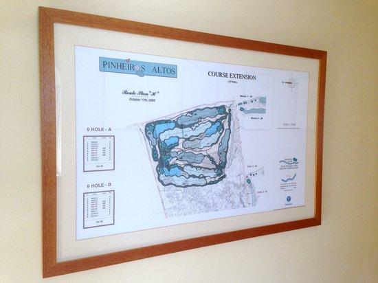 Pinheiros Altos: Mapa da extensão.