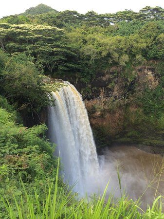 Wailua Falls: Rains had arrived so the pool was muddy and the unique