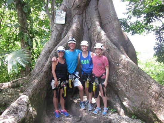 Kenneth's Jamaican Dream Vacation - Tours: At Jamaica Adventure Zipline Tours