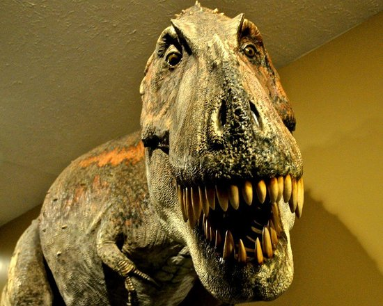 Dinosaur Museum and Heartland Haunt