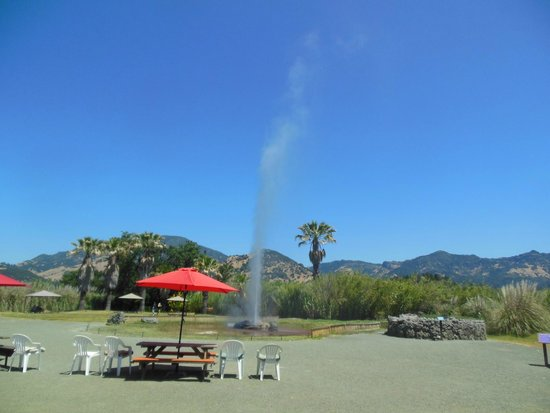Old Faithful Geyser of California: Old Faithful Geyser Erupting