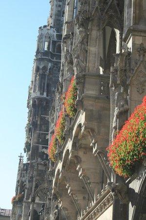 Marienplatz: Цветы!!!
