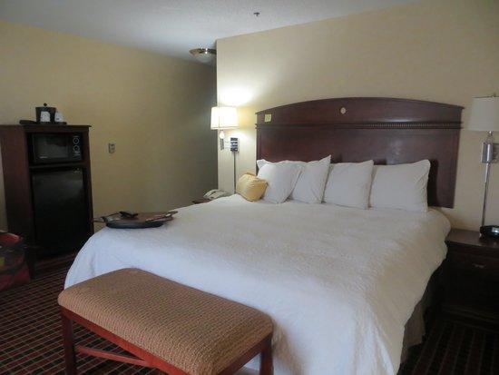Hampton Inn & Suites Dayton-Airport : king bed