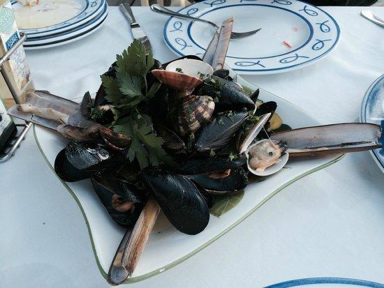 Ristorante Bagni Delfino: clams, mussels