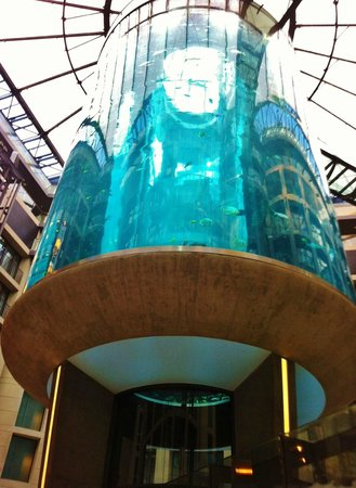 Radisson Blu Hotel, Berlin : View of the tank from the Lobby