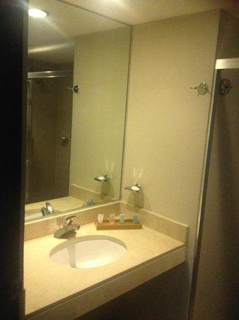 Hotel El Espanol Paseo de Montejo: Baño con amenidades y secadora