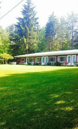 Aalsmeer Motel & Cottages: Back doors of motel rooms