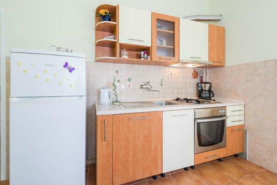 Apartments Komazin : apartment Lavanda- kitchen