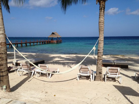 Secrets Aura Cozumel: Hammock I stayed in for several hours!