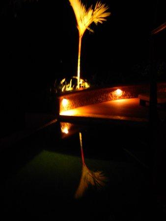 Punta Gabriela: Villa 1 pool