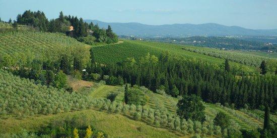 Villa San Filippo Resort: vue