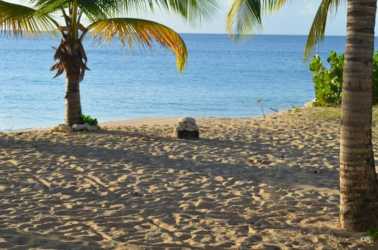 Galley Bay Resort & Spa : Beach Outside Premium Beachfront Suites