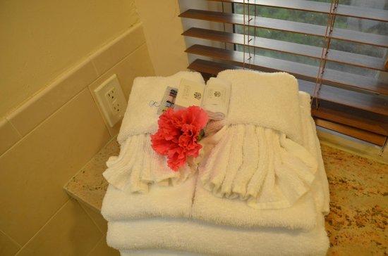 Galley Bay Resort : Bathroom Presentation Upon Arrival