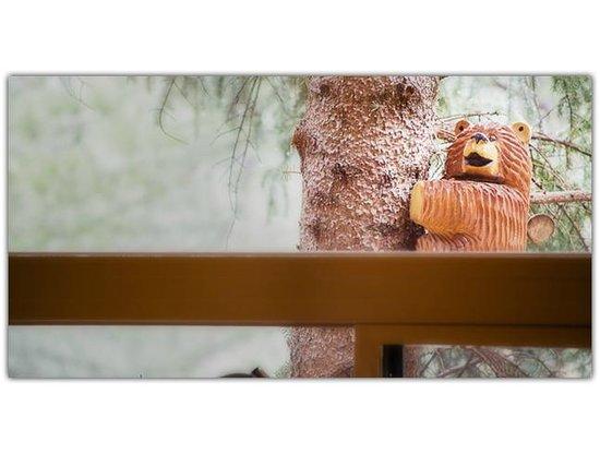 Pinon Park Vacation Rentals: Bear Carvings