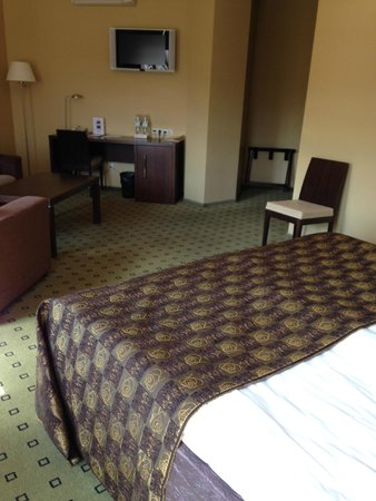 Hanza Hotel : Large, clean comfortable sunny room