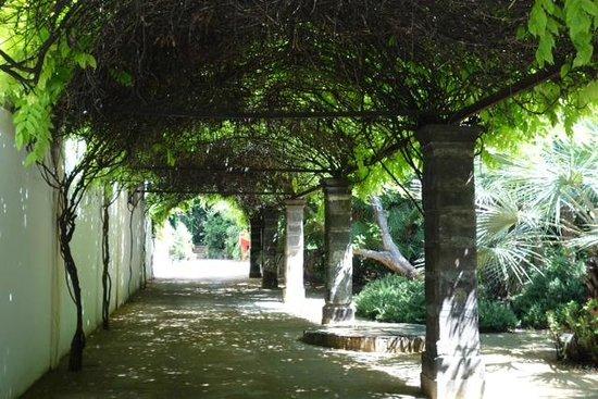 Bodegas Tío Pepe: A walkway at the bodega