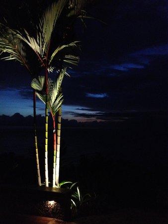 Punta Gabriela: reflection