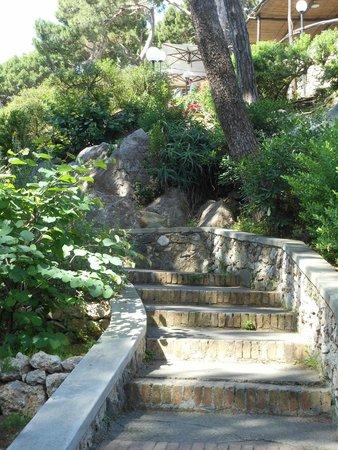Giardini di Augusto: Quiet beauty