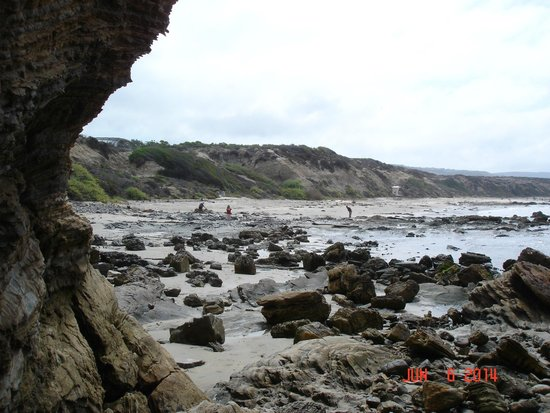 Crystal Cove State Park : Little Treasure Cove area