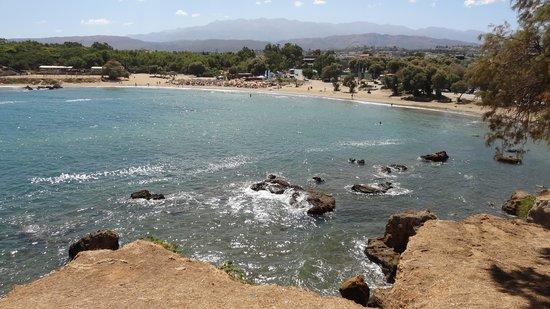 Golden Sand Hotel: Iguana beach
