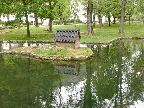 Hotel Manantial: Lago de los cisnes