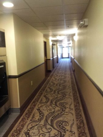 Comfort Inn New River : Hall