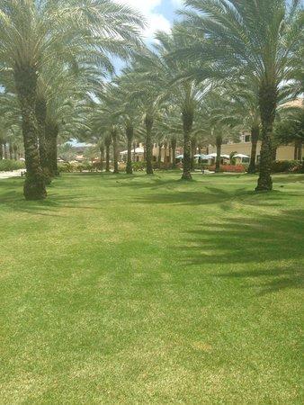 Santa Barbara Beach & Golf Resort, Curacao: Resort Grounds