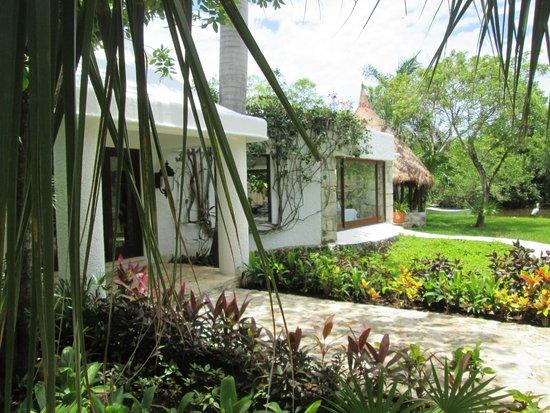 Hacienda Pavoreal: un lugar magico