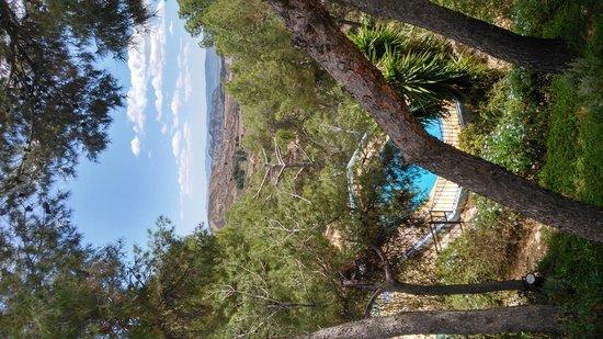 Hospederia la Mariposa: View from the resteraunt patio.