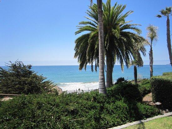 SeaCrest OceanFront Hotel: views