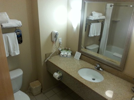 Holiday Inn Express Hotel & Suites Detroit-Utica: Bathroom