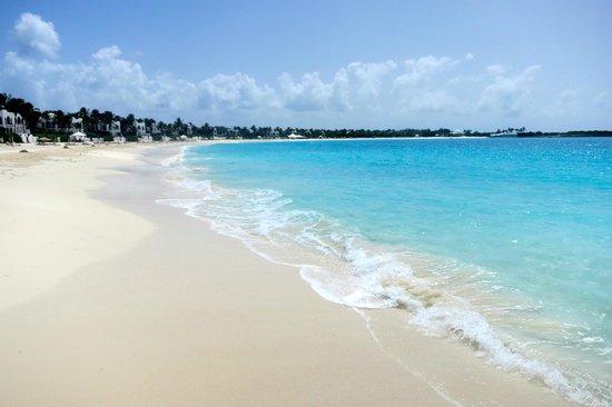 Cap Juluca: beach