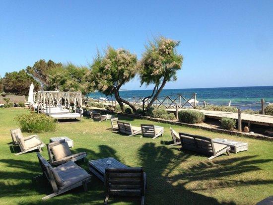 Gecko Hotel & Beach Club: Beach Front