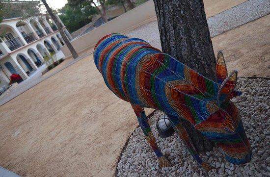 Un burro anda suelto en la Finca El Otero